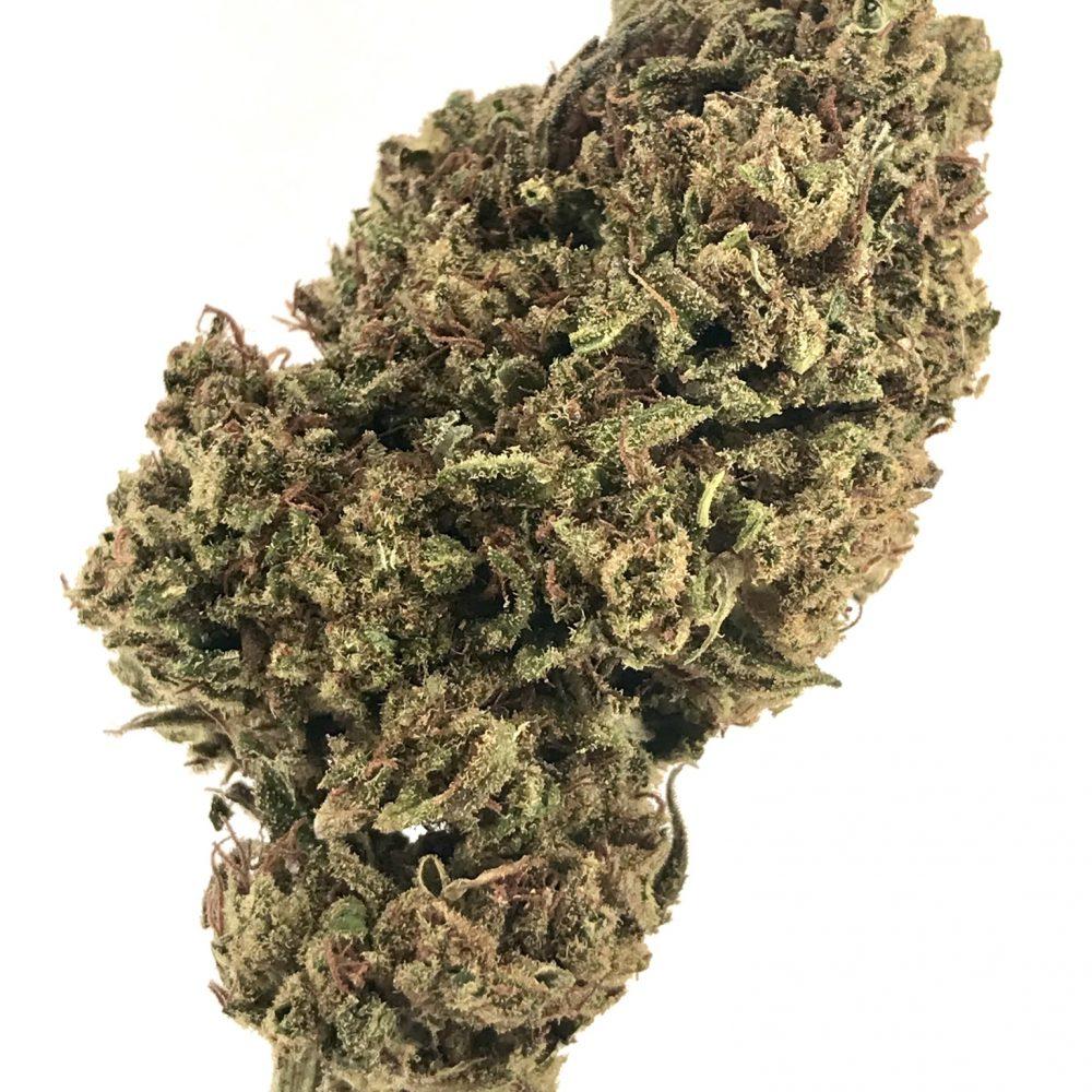 CBD Flower Clearance Sale Only $50/lb 2019 Harvest - No seeds, Great Nose - 2020 Flower @$300/lb
