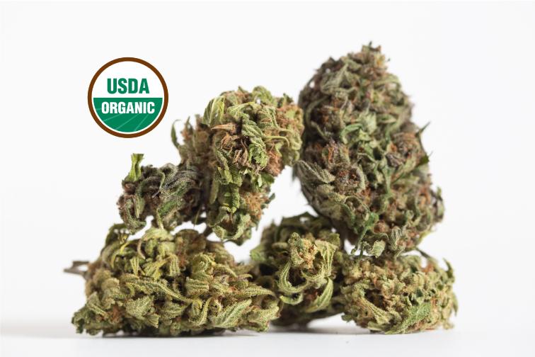 CLEARING OUT SALE! Hawaiian Haze - USDA Organic 16% CBDA $125-175/lb NO MIN