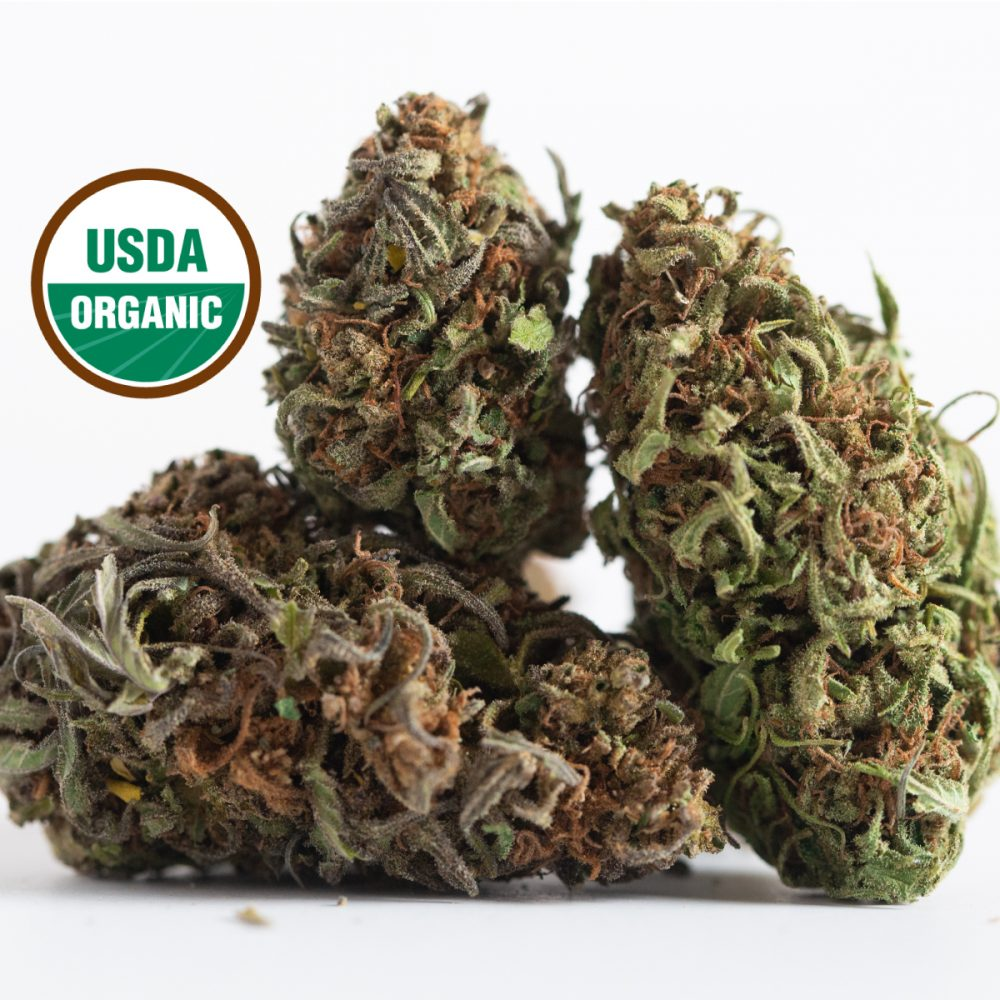 CLEARING OUT SALE!!! Suver Haze - USDA Certified Organic 19.32% CBDA $125-175/lb NO MIN