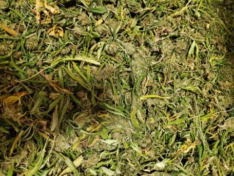 USDA Organic Biomass, hand shucked, hand harvested