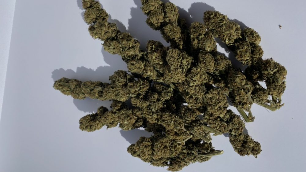 Premium quality hand trimmed and machine trimmed high CBD Smokable Hemp flower available.