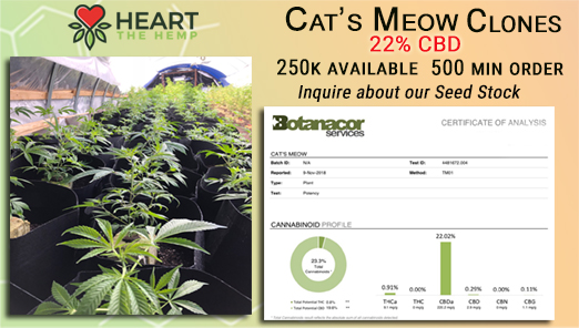 Cat's Meow Clones 20% CBD 250k+ Available - 500 Min - Many Other Strains