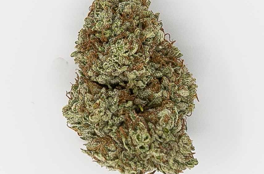 DONT BE FOOLED BY SEEDED HEMP THAT DOESN'T LOOK LIKE THE PICTURE! WE HAVE DISPENSARY LEVEL FLOWER.