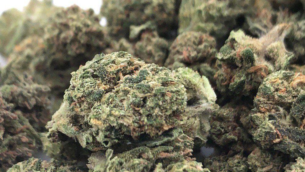 SALE!!!  $175 lb. Premium 16.86% CBD Charlotte's Wife hemp flower. Smokable.  Smells amazing!!!