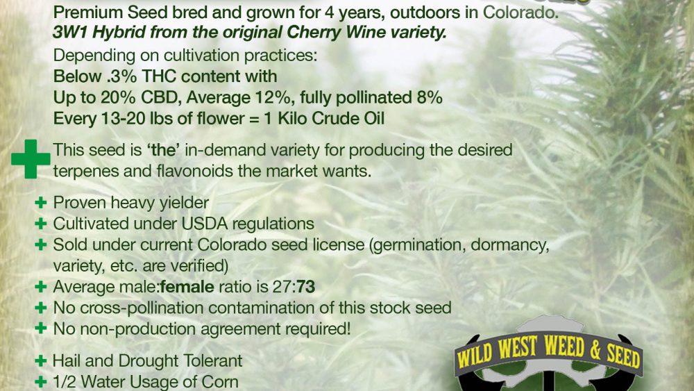 Hemp Seeds CBD Cherry Hybrid For Sale