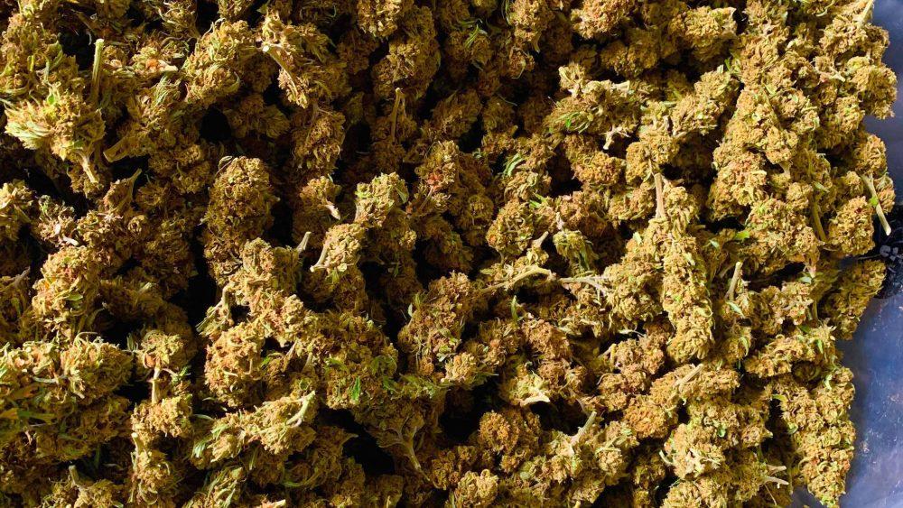 BEAUTIFUL CBD Smokable Hemp Flowers - 20% CBD