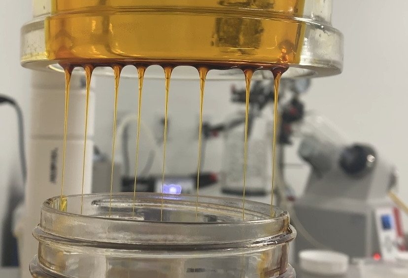 74% CBD CO2 Extracted Full Spectrum Oil