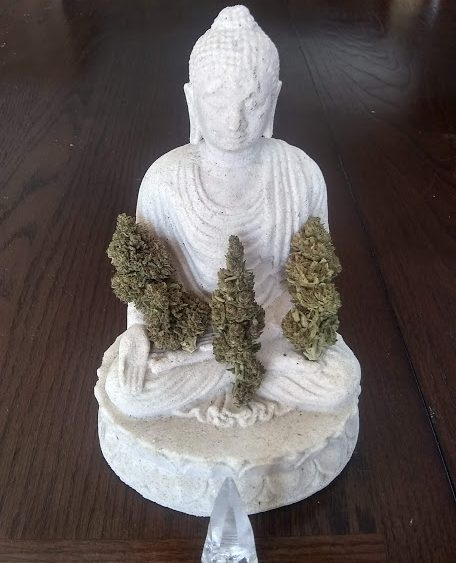Tru-ganic medicine: Lifter/SuverHaze flower 15-17%. High terpene. Flexible quantity/price options.