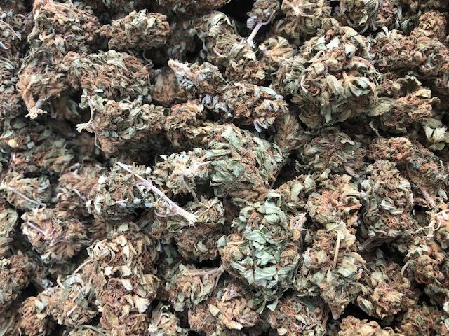 Certified Organic New York Hemp Flower