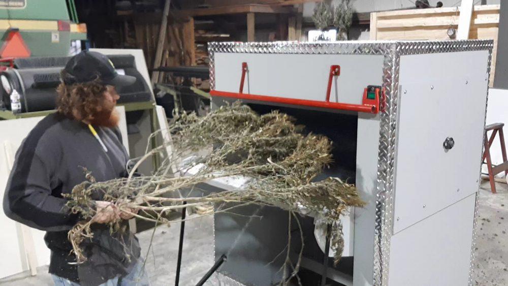 Buccaneer Hemp Equipment Full Plant Bucker!