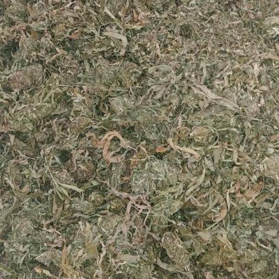 Premium Bucked high CBD Biomass