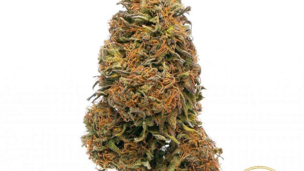 CBD Smokeable Flower, 100% Organic Top Shelf