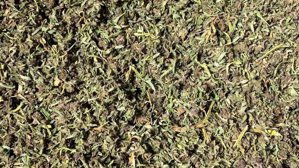 100K lbs biomass for sale in califonia CBD 10% for $12