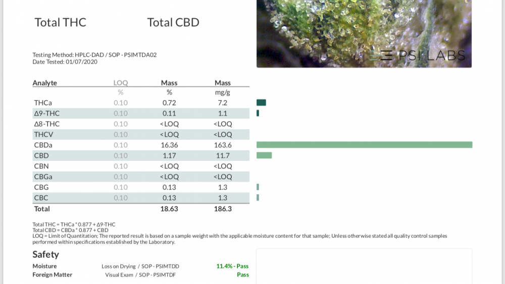 200 pounds Indoor Premium Smokeable Flower 16.3% CBD $300-400 per pound Located in Michigan