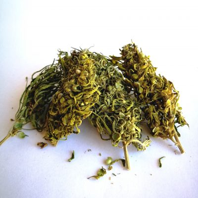 Free delivery worldwide Hand trimmed CBD hemp buds/ 2018 New harvest Wholesale