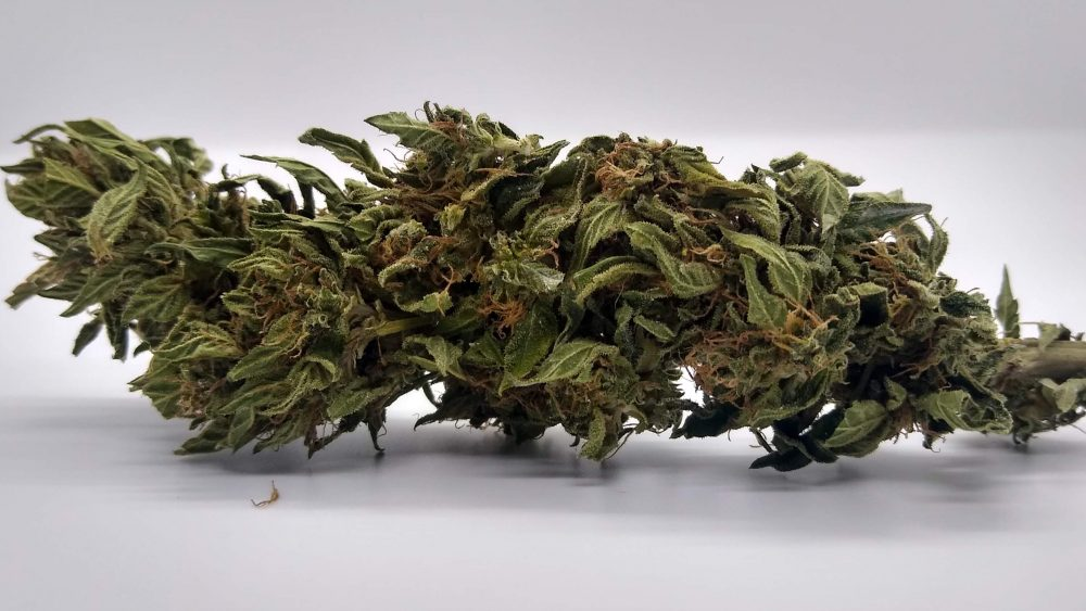 $125/lb- T1 Smokeable Flower-under .3% TOTAL THC