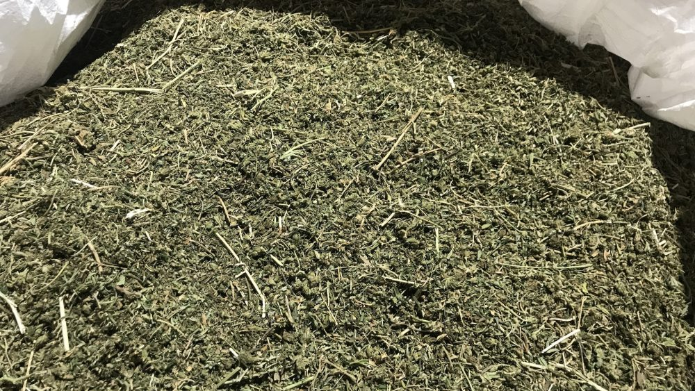 High Quality Biomass