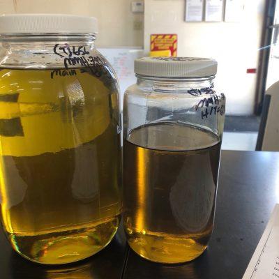 CO2 Extracted CBD rich hemp oil from USDA organic hemp