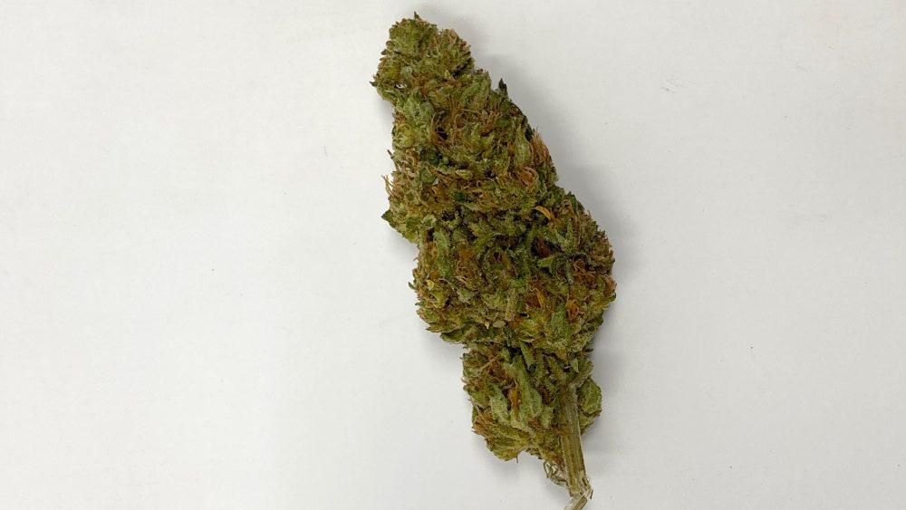 Sale - flower - $75 lb - Abacus - OG gas strain