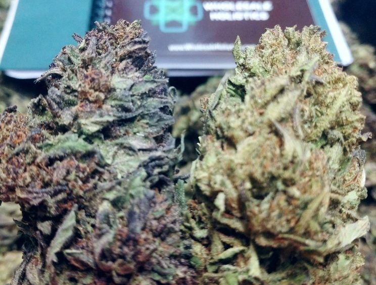 CBD Smokable Flower-Bulk Bucked or Hand Trimmed-99% Seed Stem and Shake Free Great Terp Profile&Look