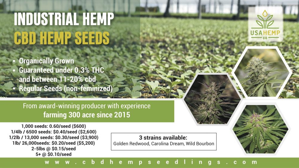 Hemp seeds (blowout sale)
