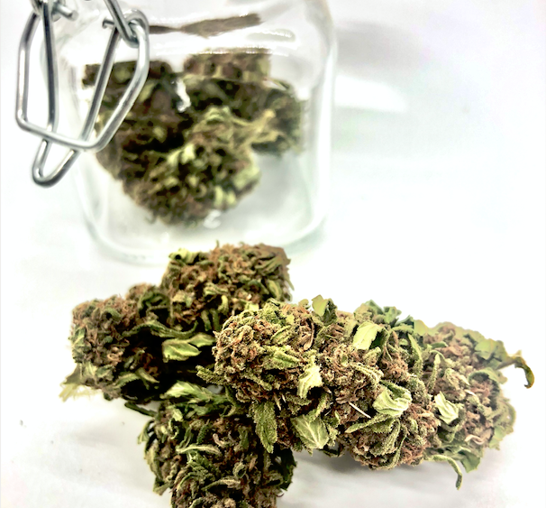 Smoke-able High CBD Flower for only $200.00/LB - The Wife x T1, Cherrywine, Cherry 2.0, Cobbler