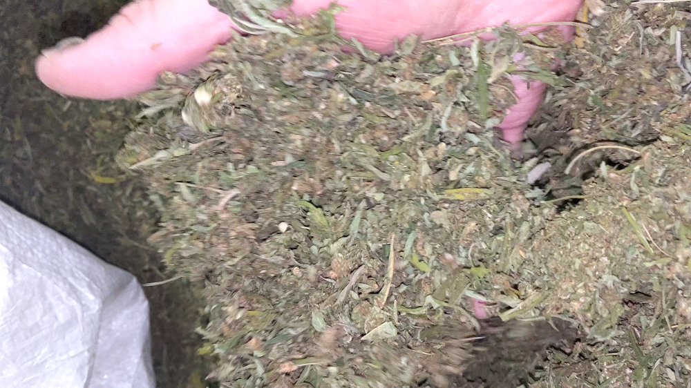 $8/lb Biomass|$100/lb Smokeable Priced to sell| Delivery Available