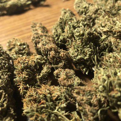 BUDS 8% CBD, 0.2% THC - EU